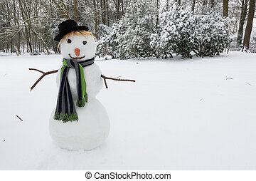 Snowman with hat - Happy snowman standing in the park...