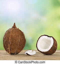 Coconut fruits in summer with copyspace