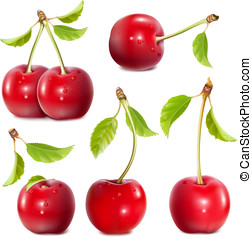 Ripe red cherries - Big collection of photo-realistic vector...