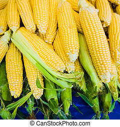 market stall with corncobs. Fresh sweet corn - market stall...