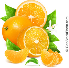 Fresh lemons with leaves and blossom. - Fresh ripe oranges...