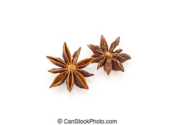 Anise - Beautiful photo anise isolated on white background...