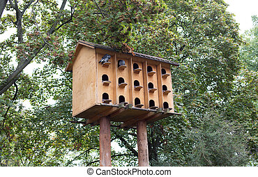Bird house - A large  house for doves in a public park