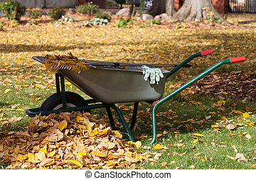 Cleaning equipment in a garden during autumn