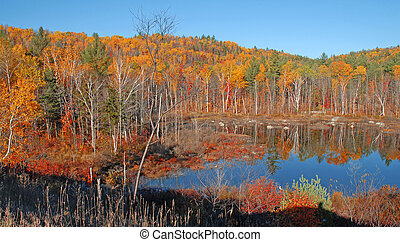 Autumn colors, Adirondacks New York