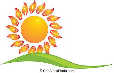 girasol, icono, logotipo, diseño, vector