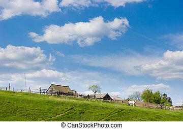 Rural scene - Spring rural scene with horse