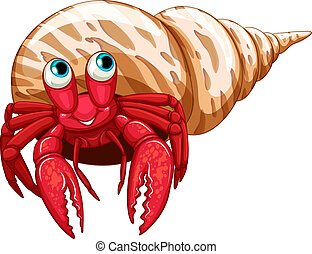 Hermit crab - Illustration of a single hermit crab