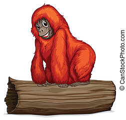 Orangutan - Illustration of an orangutan on a long