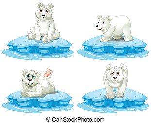 Polar bear - Illustration of polar bears set