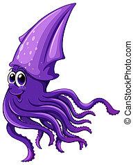 Squid - Illustration of a close up squid
