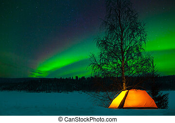 Camping in the north with the northern lights overhead -...