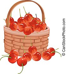 Vector of fresh cherries. - Vector illustration of fresh...