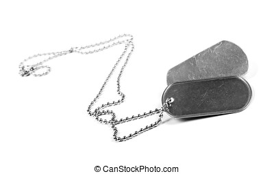 blank metal tags hanging on chain. isolated on a white