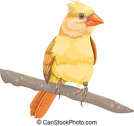 Vector of bird perching on branch.
