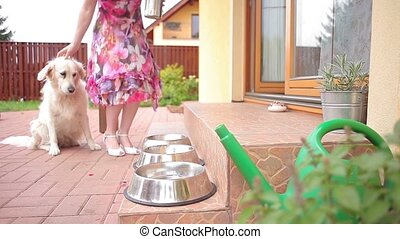 Feeding dogs - A female caucasian young adult lady feeding...