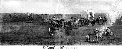 Herds in the distance The entourage, vintage engraving -...