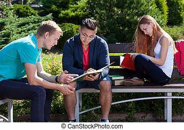 Studying on a students camp during summer