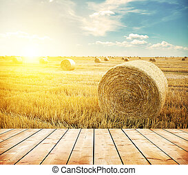 Field - hay-roll on meadow against sunset background with...