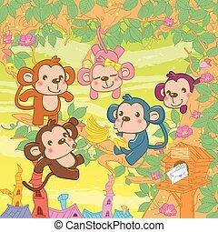poco, scimmie