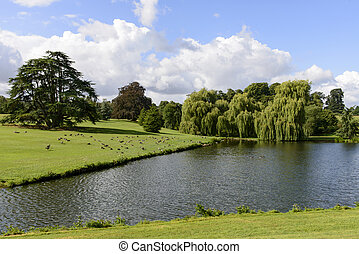 trees and lake in Leeds castle park, Maidstone, England -...