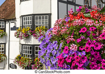 blossoming flowers and old houses, Henley on Thames -...