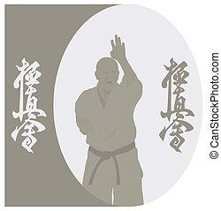 The illustration, the man shows karate on a gray background...