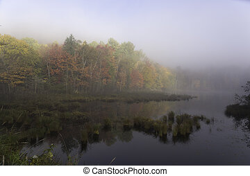 Small lake at fall with mist
