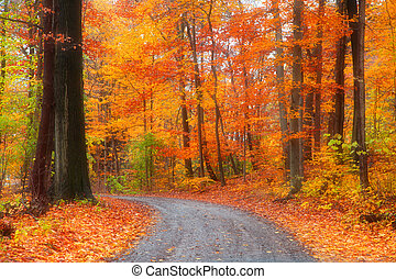 Beautiful autumn drive - Scenic road through bright autumn...