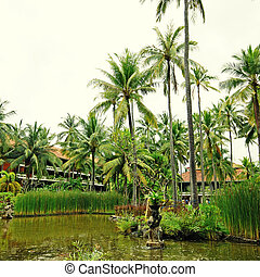 pond and palm tree on tropical resort Bali, Indonesia - view...