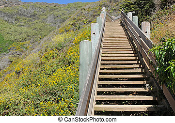Stairway - Beach access stairway, Graywhale Cove State...