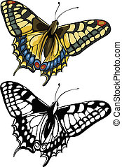 Butterfly Swallowtail - Vector illustration, isolated,...
