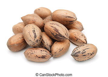 Pecan - Heap of pecan nuts in shell isolated on white