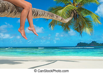 Womans legs on a palm tree at tropical beach against ocean