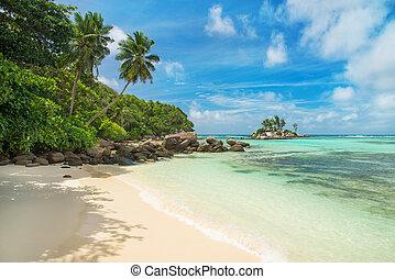 Seychelles,  Mahe, ilha, tropicais,  royale, praia,  Anse