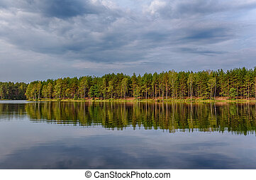 cloudy day - landscape in the forest lake on a cloudy day