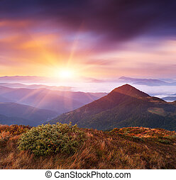 Mountain landscape at dawn - Delicate state of nature in the...