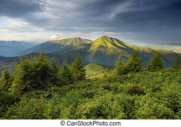 Morning in mountains - Summer landscape with colorful...