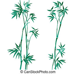 Bamboo illustration - Vector illustration of a bamboo