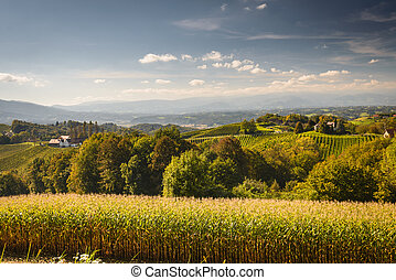 Landscape with wineyard on an Southern Styria...