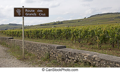 french famous road - famous french road of cote dor in...
