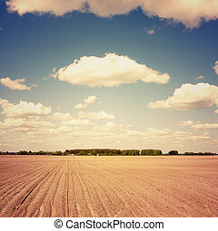 Rural landscape of field and clouds. Vintage retro style