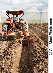 tractor preparation soil working in field agriculture.
