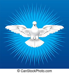 Holy Spirit - White dove as the Holy Spirit