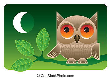 Big eyes - Cute owl sitting on a branch at night