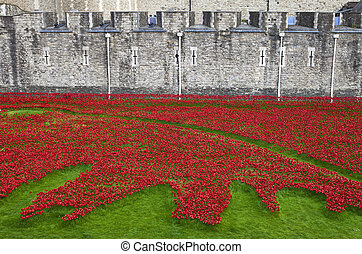 Poppies at the Tower of London - The ceramic Poppies of the...