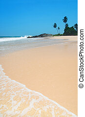 Beach with waves against rock and palm trees in sunny day -...