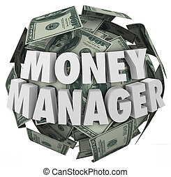 Money Manager 3d Words Ball Cash Financial Advisor