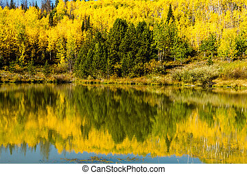 Fall in Steamboat Springs Colorado - Reflection on small...