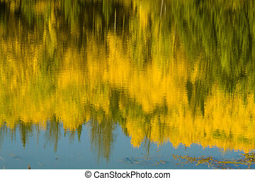 Fall in Steamboat Springs Colorado - Abstract image of...